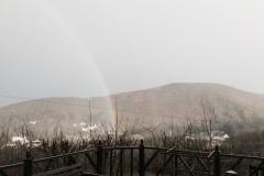 trecoed-rainbow