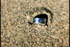 ysglan ring